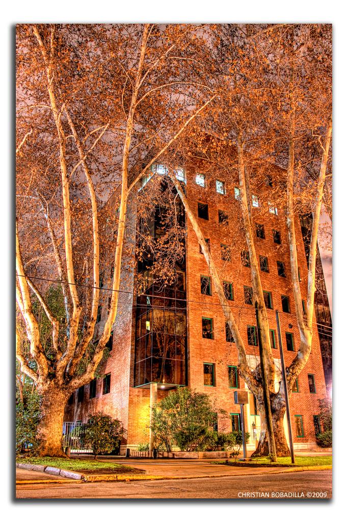 Ricetta Bobadilla's Night – Bevande