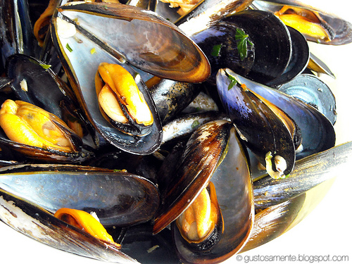 Ricetta Cozze Alla Marinara (6) – Antipasto
