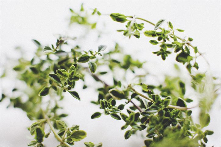 Ricetta Fruit-tail Green Peach – Bevande