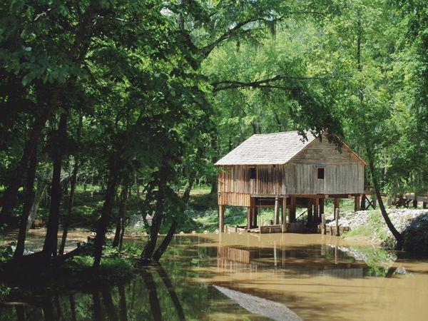Ricetta Alabama – Bevande