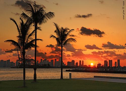 Ricetta The Miami Sunset – Bevande