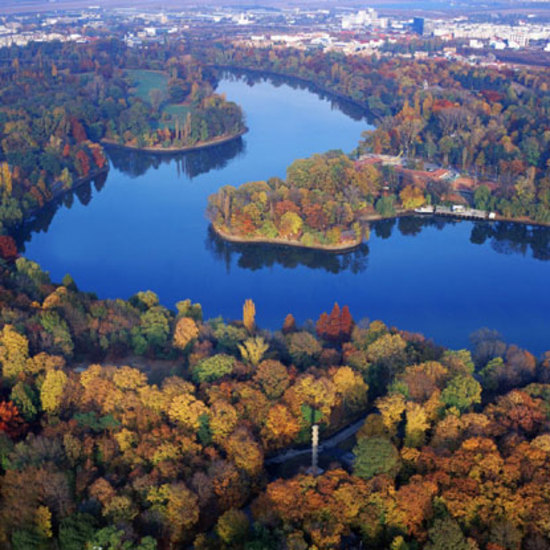 Ricetta Danubio Blu – Bevande