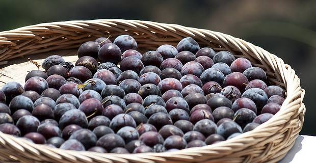 Ricetta Prugne Al Vino – Dessert