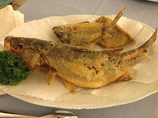Ricetta Spigola Fritta – Pesce