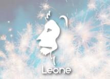 regali Natale donna leone