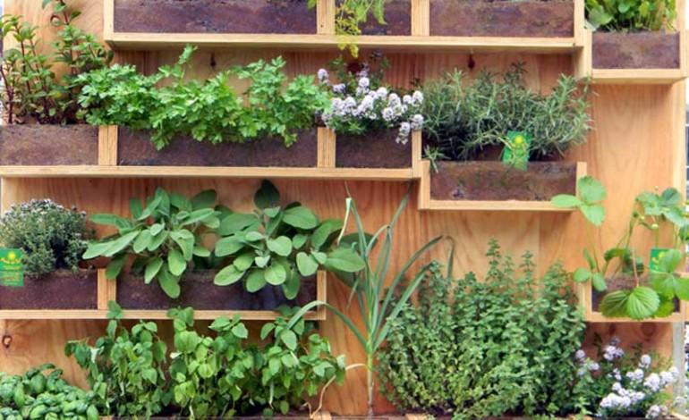 Come creare un piccolo orto sul balcone for Come costruire un piccolo cottage