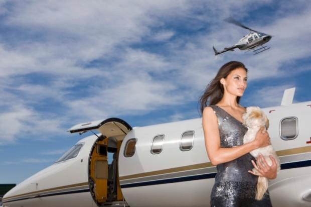Compagnie aeree che accettano cani taglia media
