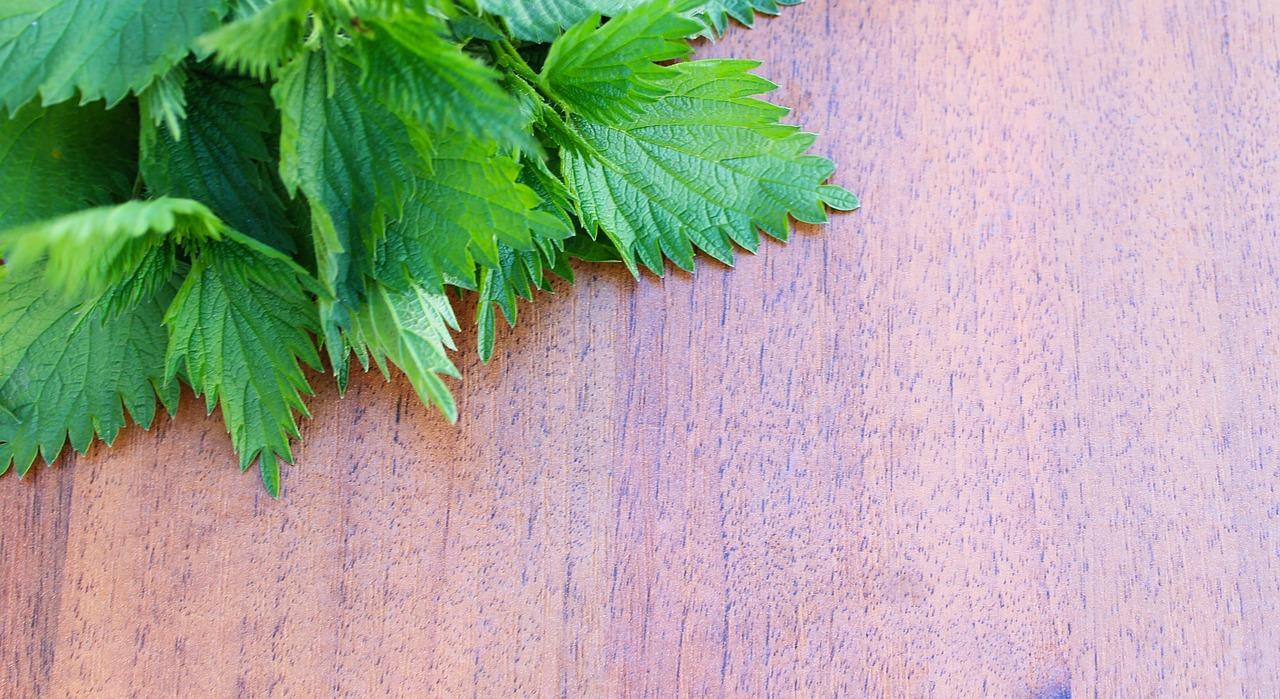 Elenco erbe diuretiche