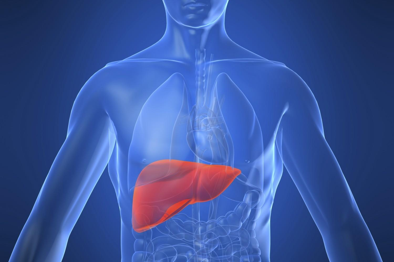 Cosa evitare per il fegato