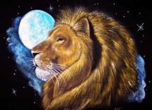 Come seduce donna leone