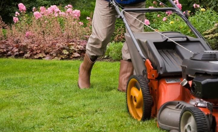Come organizzare pulizie del giardino