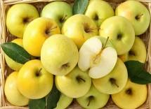 10 ricette con le mele Golden Delicious