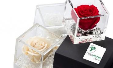 Che cosa sono le rose stabilizzate?