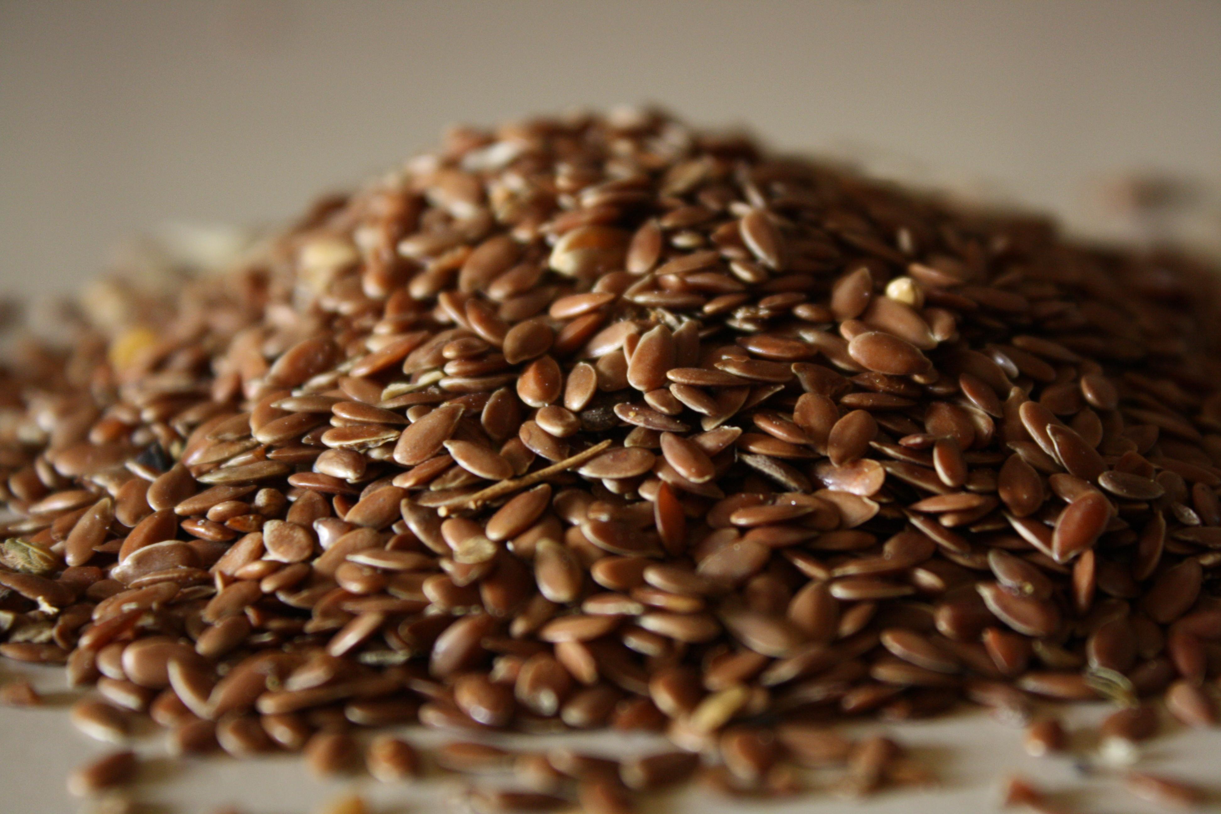 5 ricette fiori di semi di lino dorati