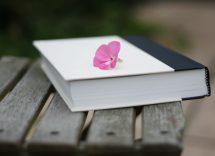 10 libri da leggere ambientati in primavera