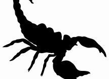 Oroscopo amore scorpione oggi