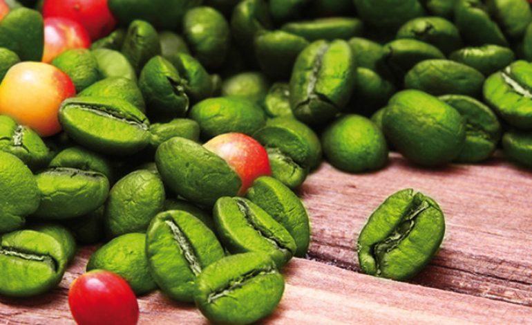 Tisana al caffè verdi: benefici
