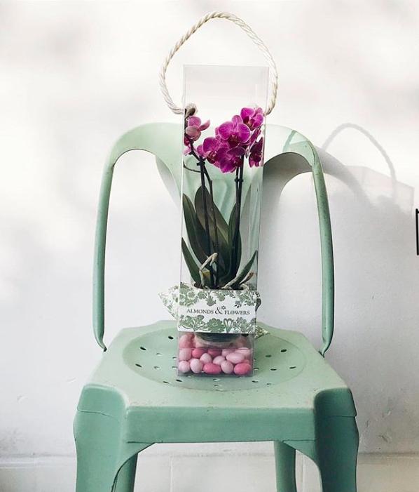 Almonds&Flowers, il nuovo progetto di Ellen