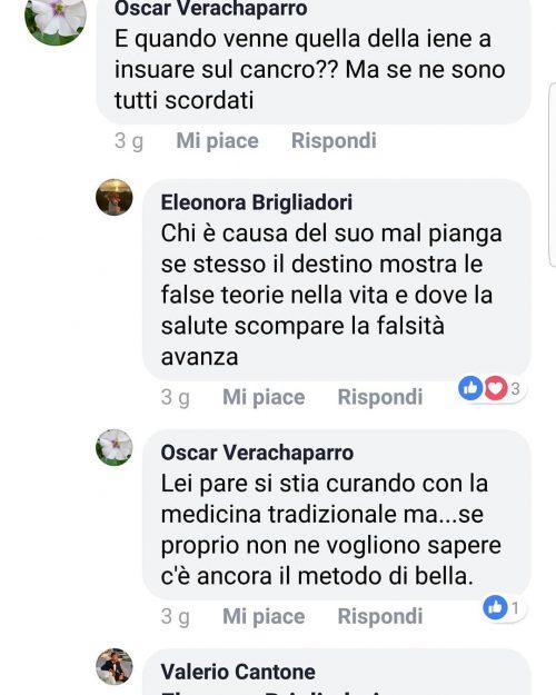 Eleonora Brigliadori contro Nadia Toffa
