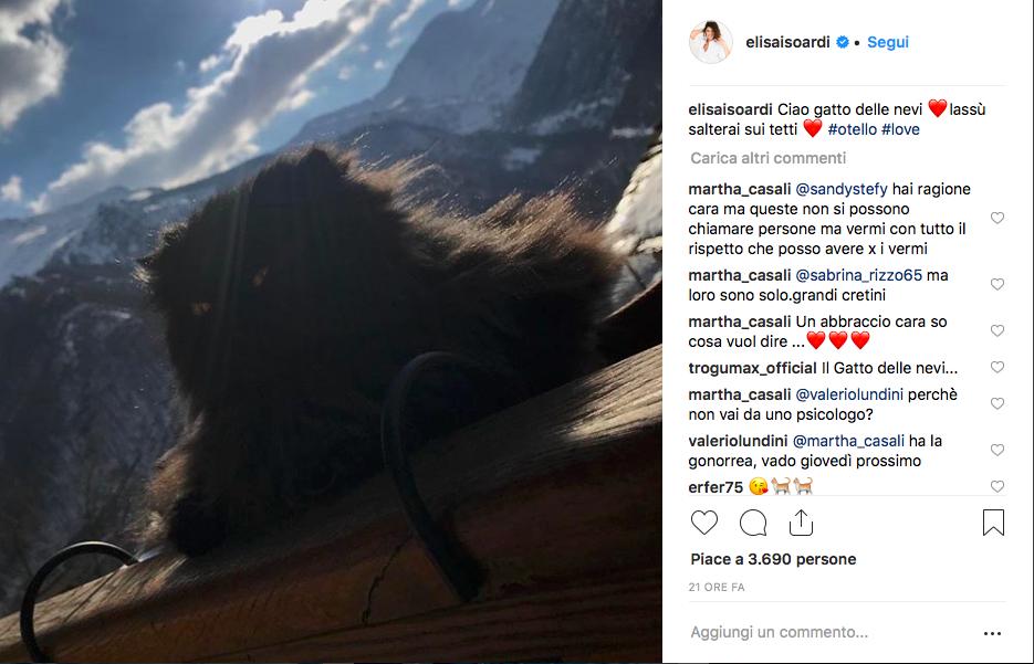 Post Elisa Isoardi Ig gattino