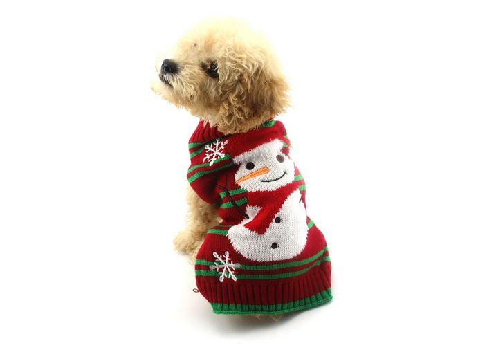 cane pupazzo neve