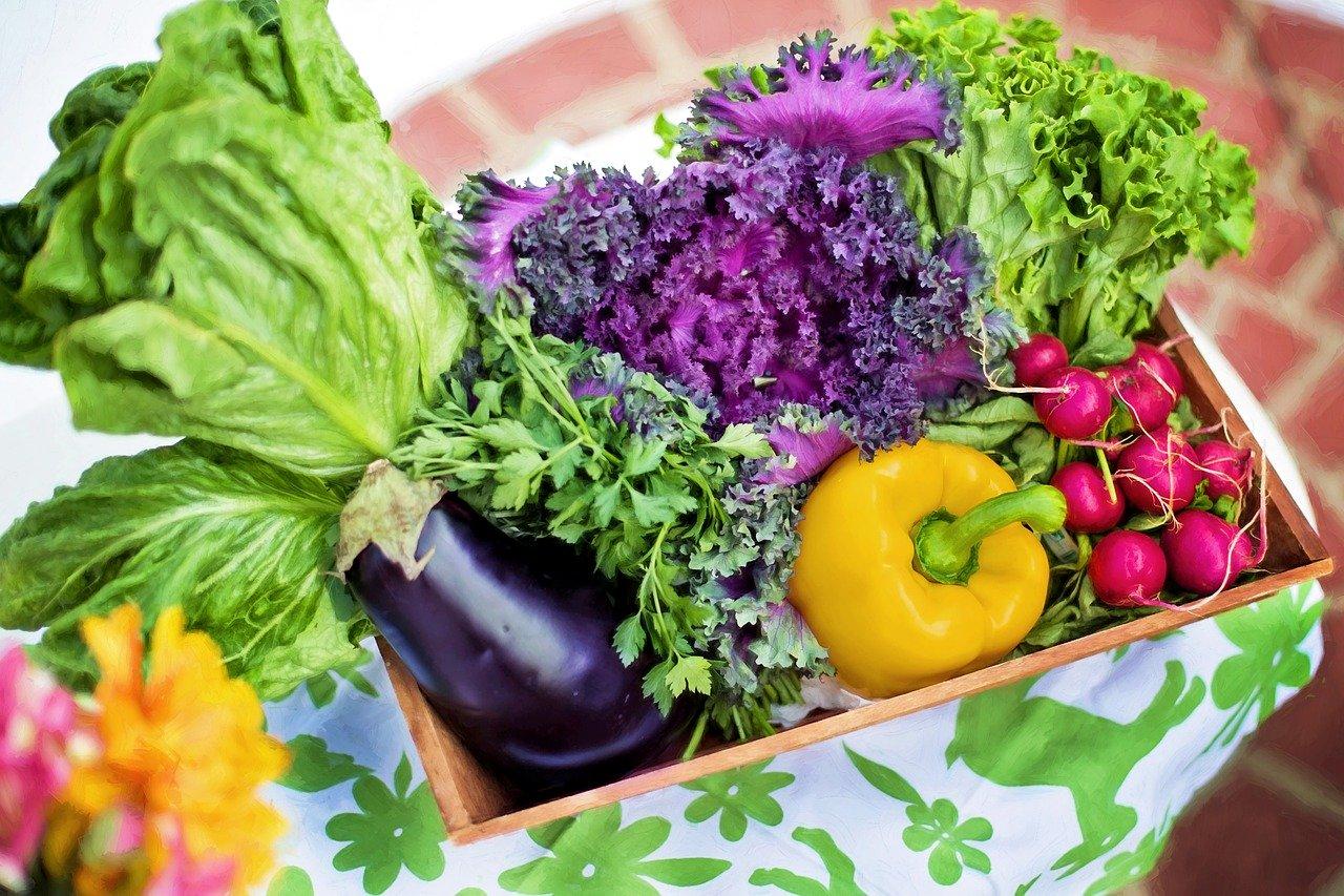 Verdura di stagione per dimagrire in primavera