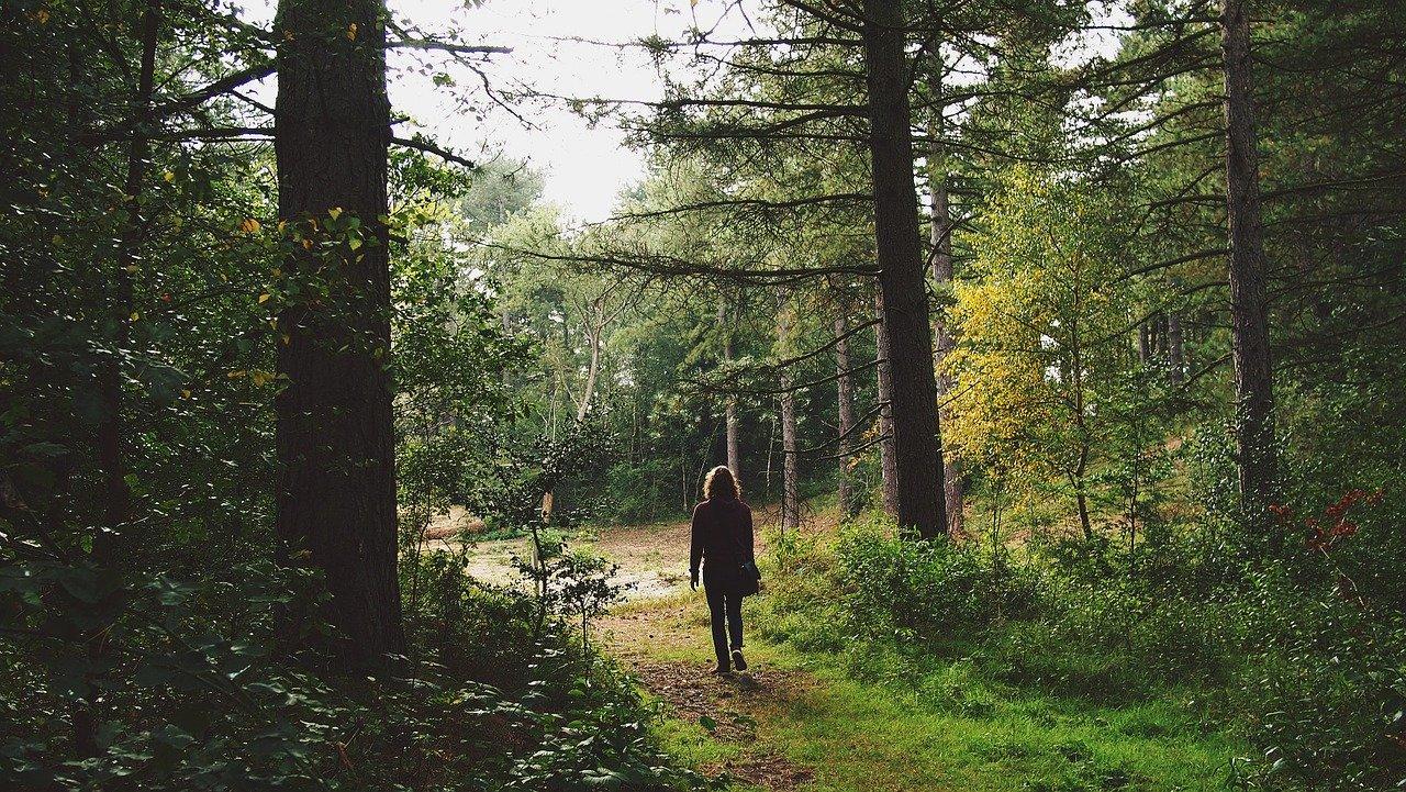 Come combattere lo stress: i consigli