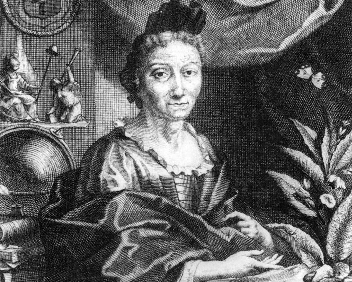 Maria Sibylla Merian chi era