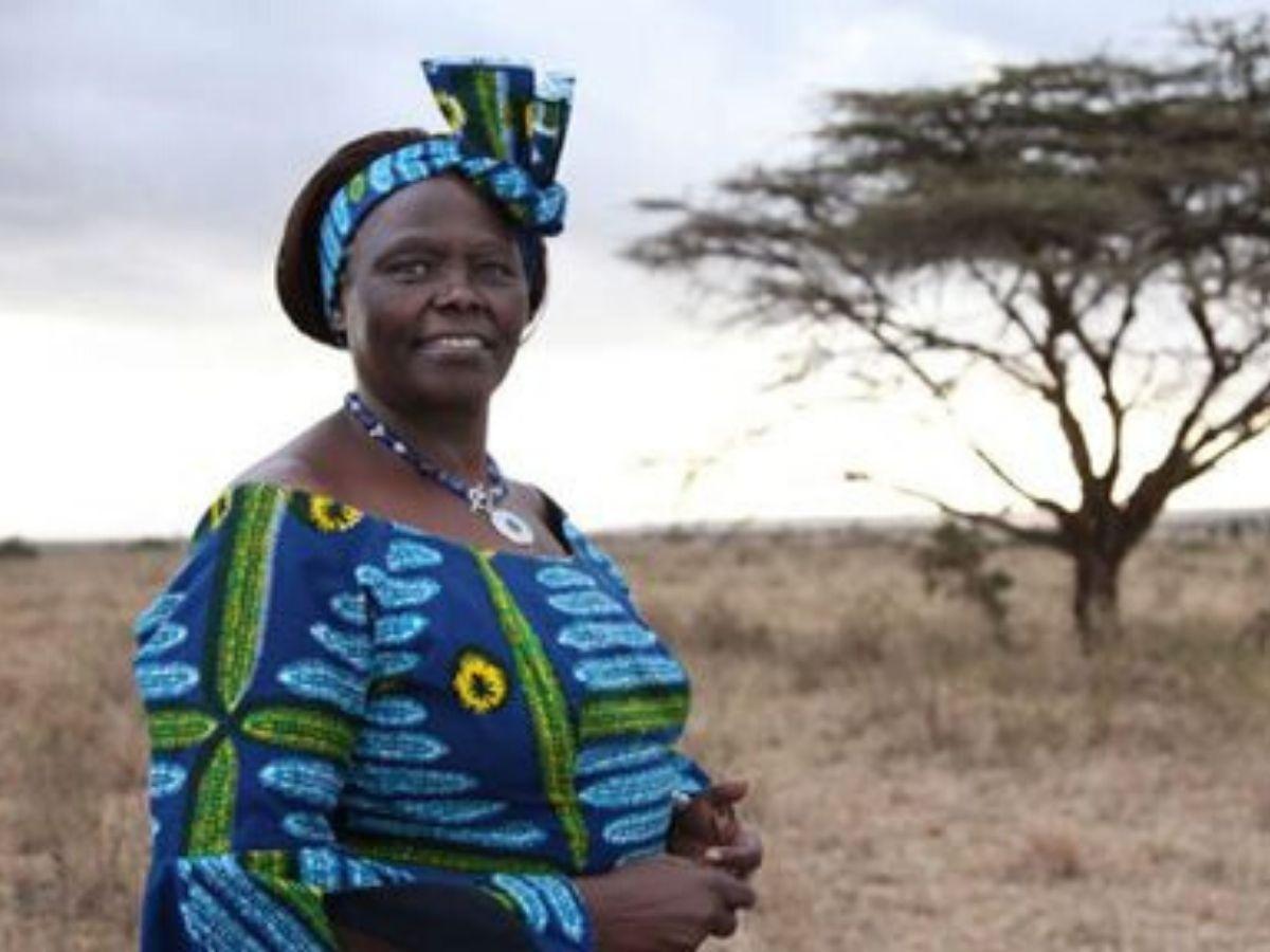 Wangari Maathai chi era