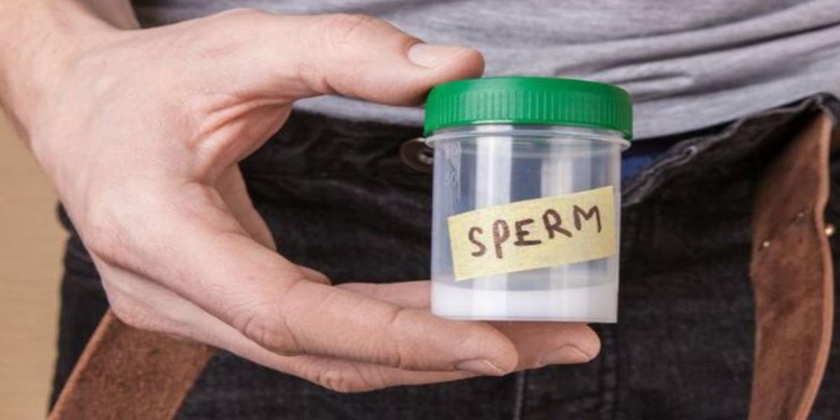 curiosità sullo sperma