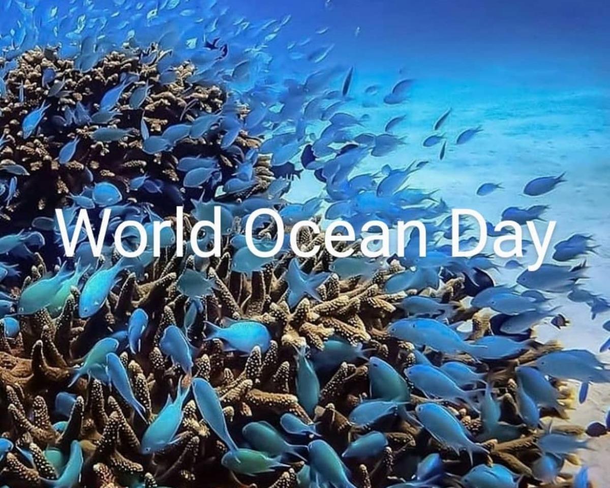 Giornata mondiale degli oceani moda