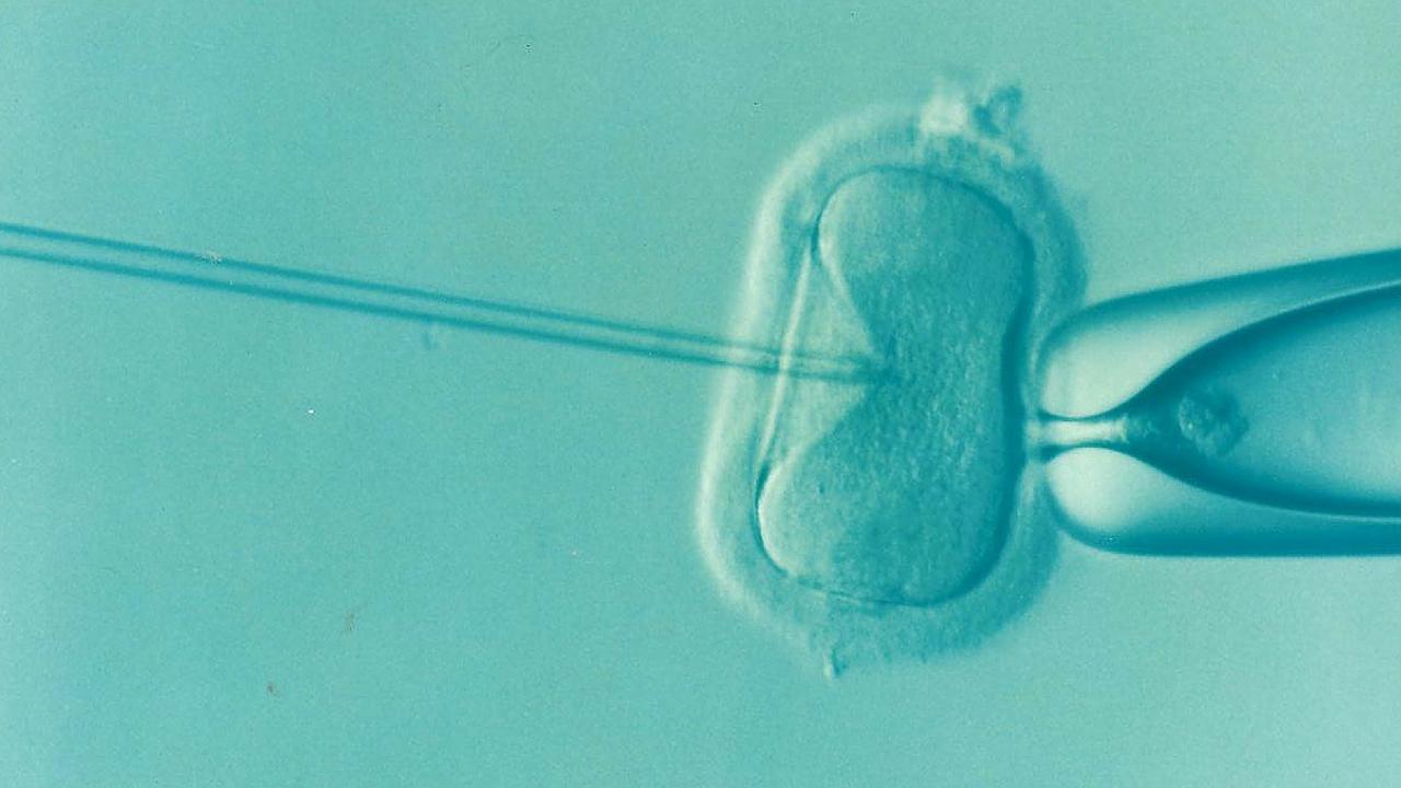 come riconoscere i sintomi dell'ovulazione