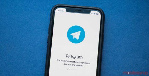 signal telegram whatsapp differenze