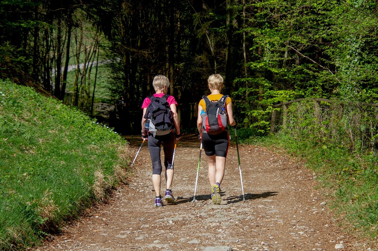nordic walking cosa e