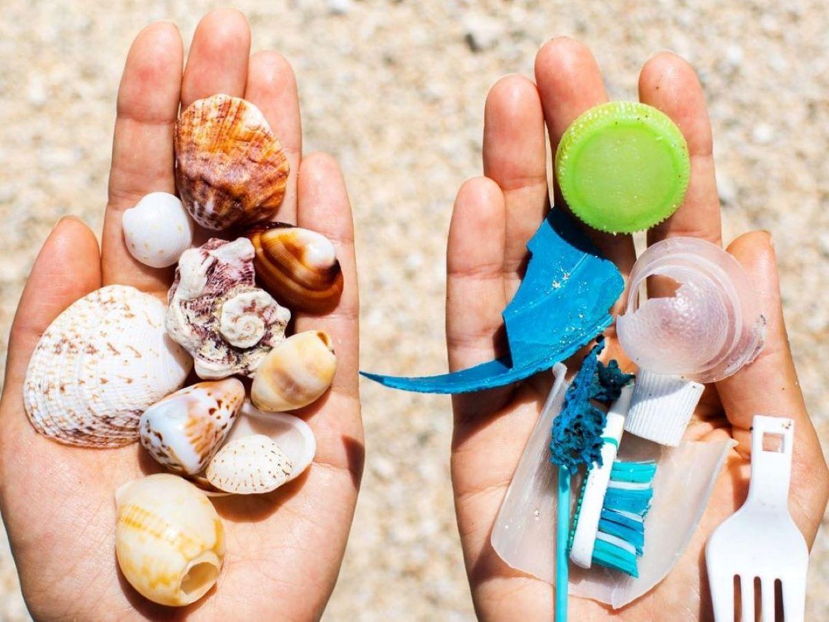 plastic fishing cosa e